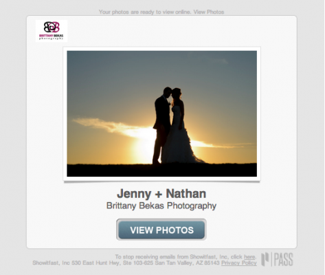 Chicago Wedding + Lifestyle Photography PASS Online Gallery   Brittany Bekas Photography