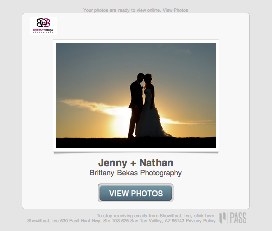 Chicago Wedding + Lifestyle Photography PASS Online Gallery | Brittany Bekas Photography