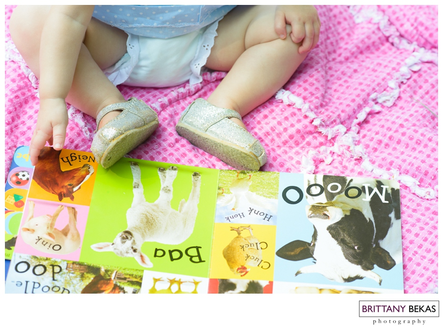 Naperville Baby Photographer First Birthday   Brittany Bekas Photography