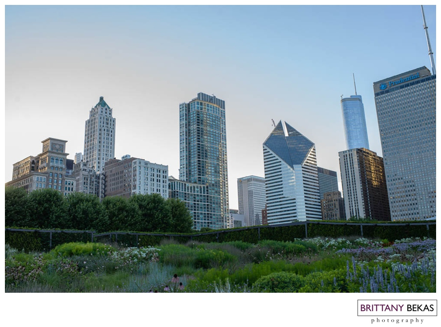 Chicago Skyline | Brittany Bekas Photography | Wedding + Destination