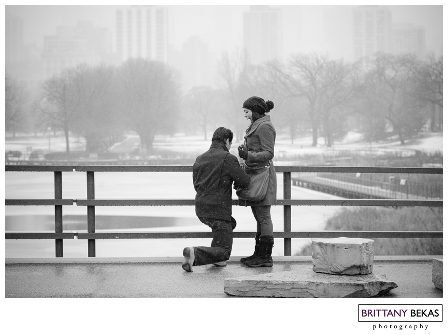 Chicago Proposal // Brittany Bekas Photography // Chicago + destination wedding photographer