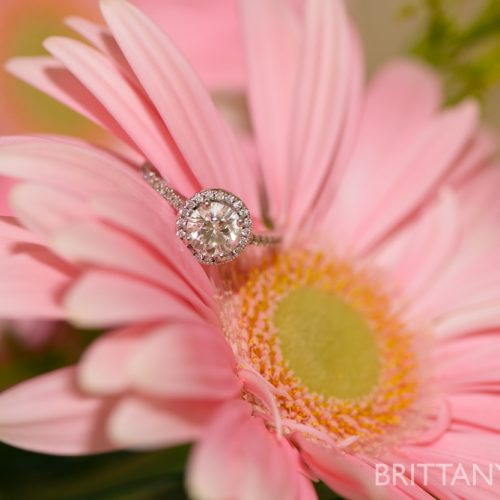 WEDDING DETAILS // engagement rings