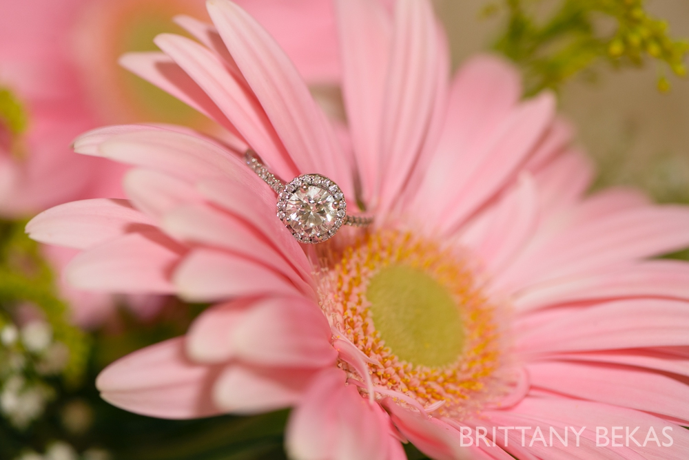 engagement ring // brittany bekas photography - www.brittanybekas.com
