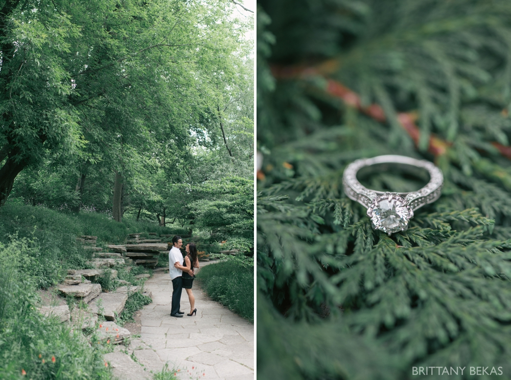 Alfred Caldwell Lily Pool Chicago Engagement Photos - Brittany Bekas Photography_0012