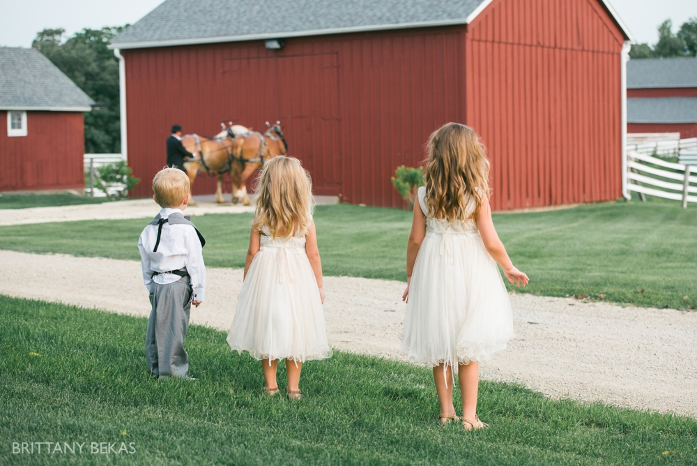 Brittany Bekas Photography - Best of 2014 Chicago Wedding Photos_0026