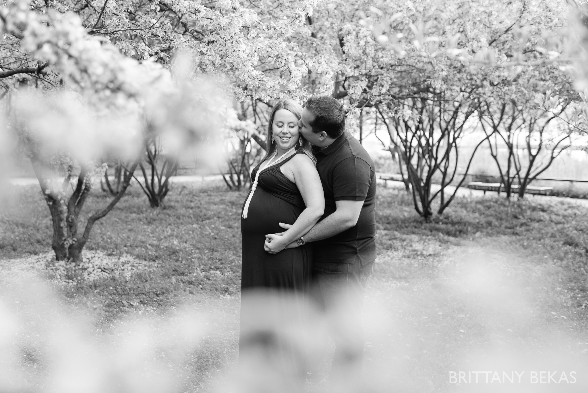 Chicago Maternity Photos - Olive Park Maternity Photos_0006