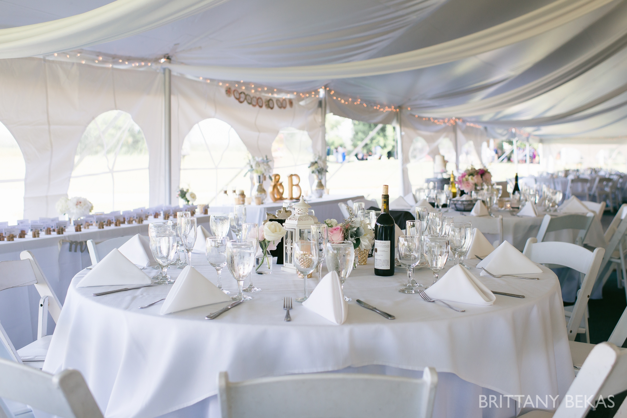 New Buffalo Wedding - Willow Harbor Vineyards Wedding Photos - Brittany Bekas Photography_0045
