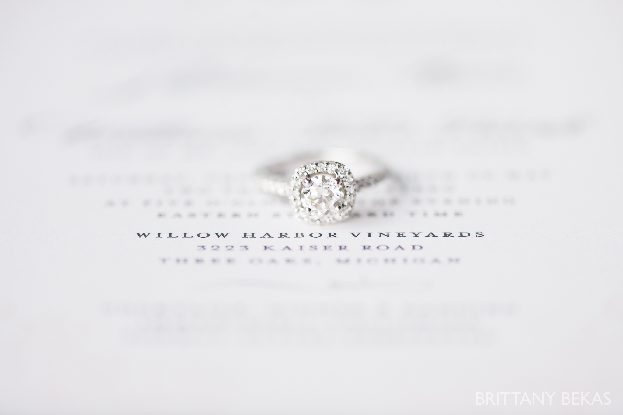 New Buffalo Wedding - Willow Harbor Vineyards Wedding Photos - Brittany Bekas Photography_0069