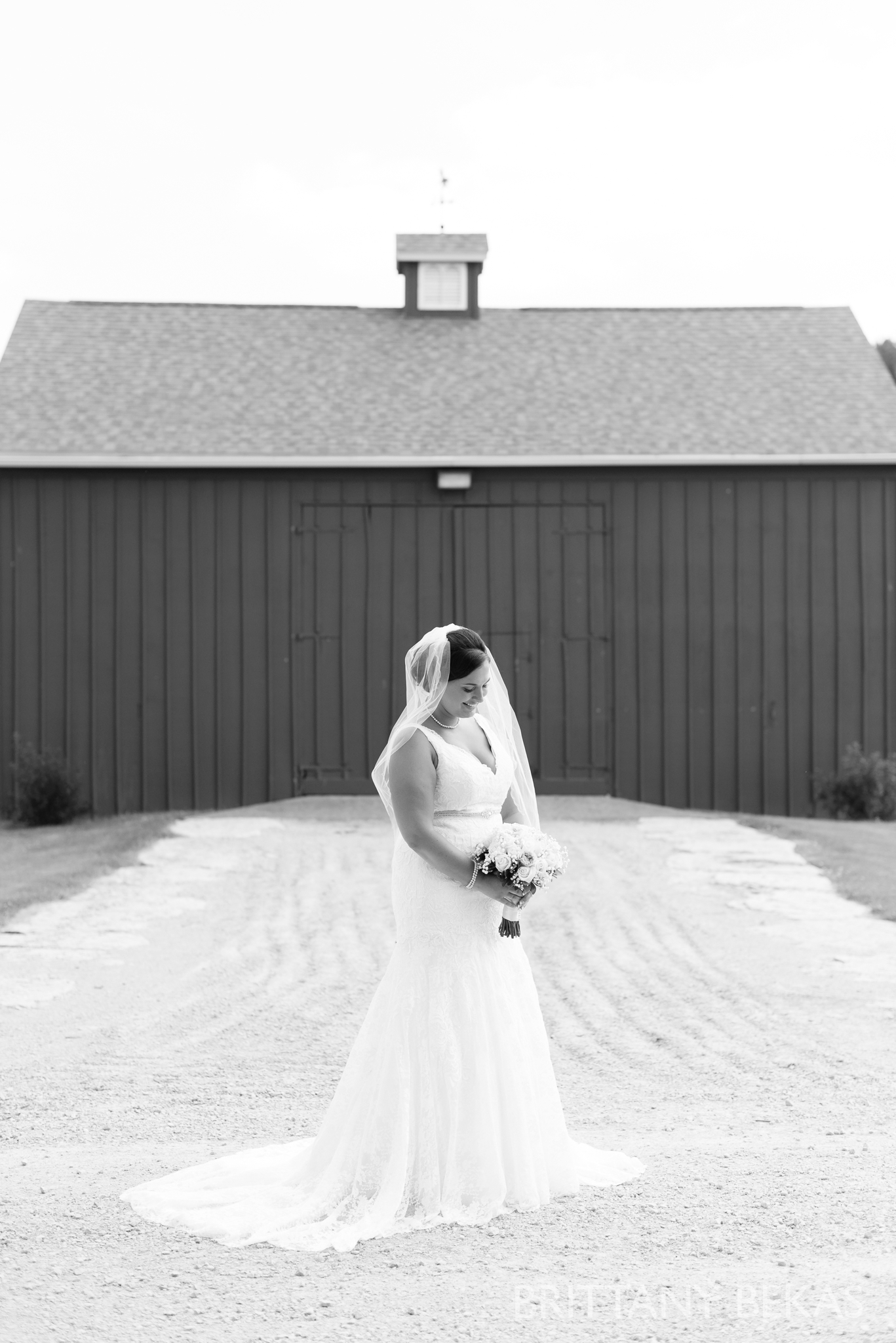 Oak Hill Galena Wedding Photos - Brittany Bekas Photography_0017