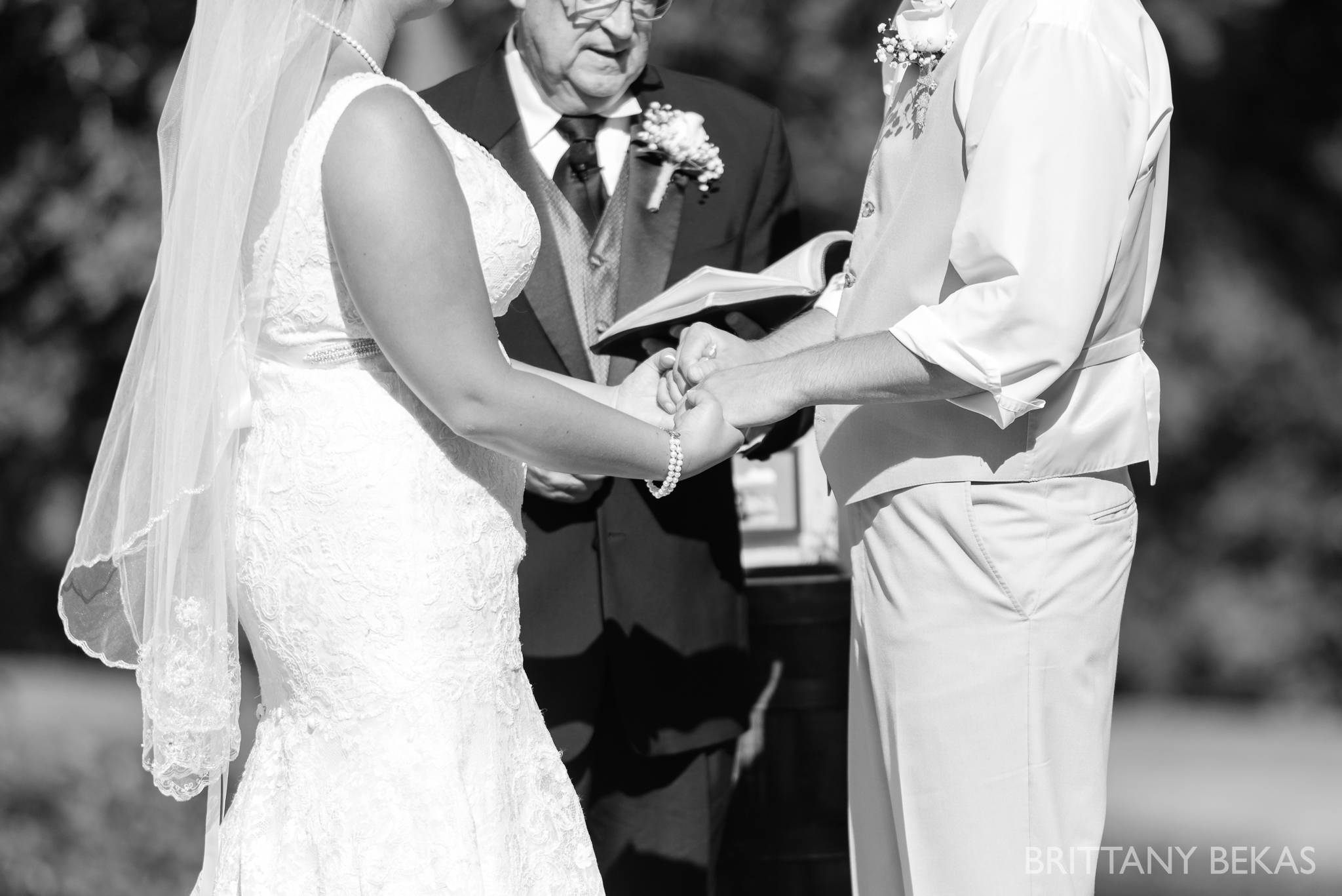 Oak Hill Galena Wedding Photos - Brittany Bekas Photography_0025