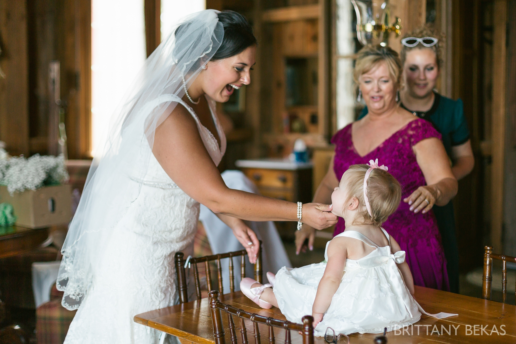 Oak Hill Galena Wedding Photos - Brittany Bekas Photography_0037