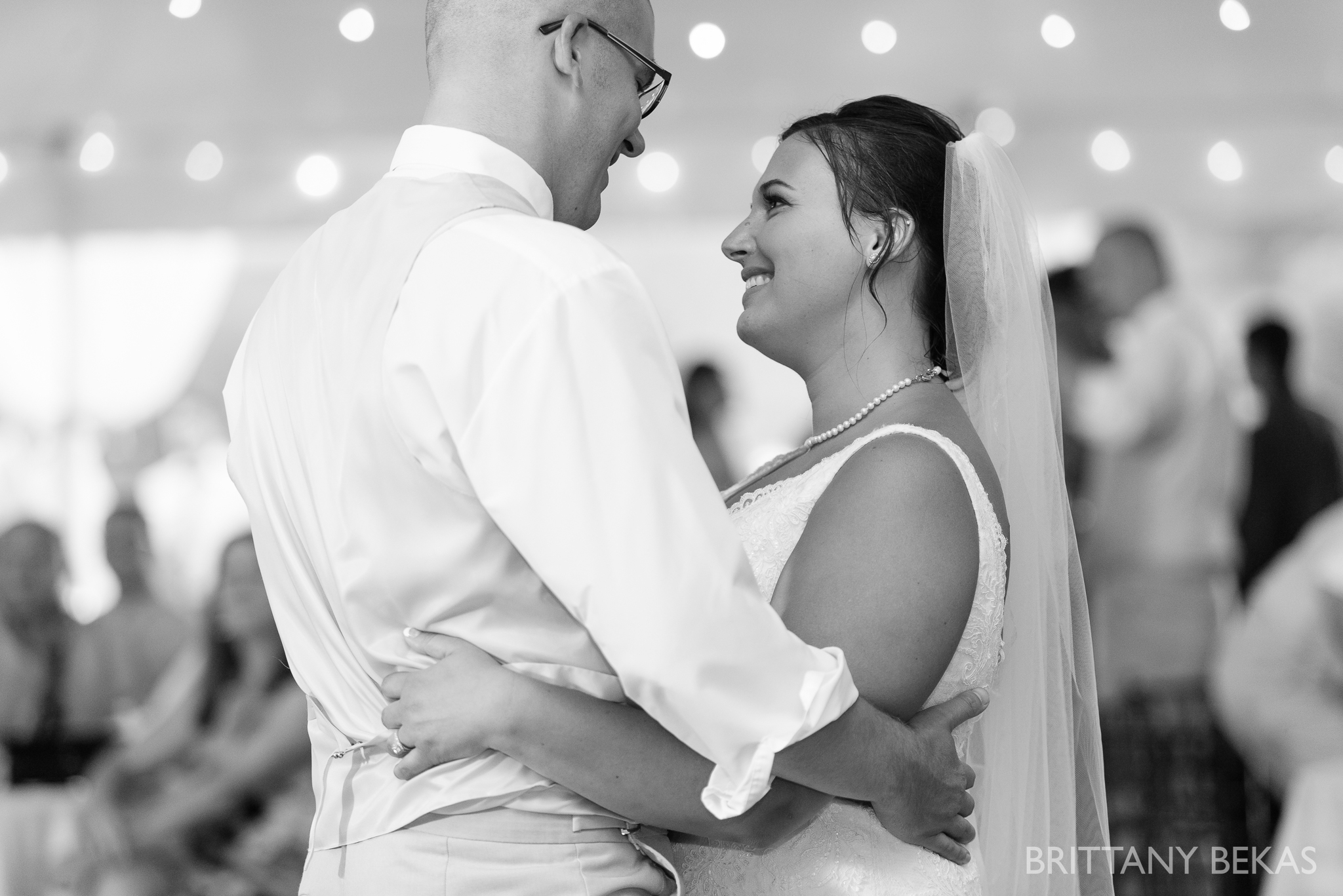 Oak Hill Galena Wedding Photos - Brittany Bekas Photography_0049