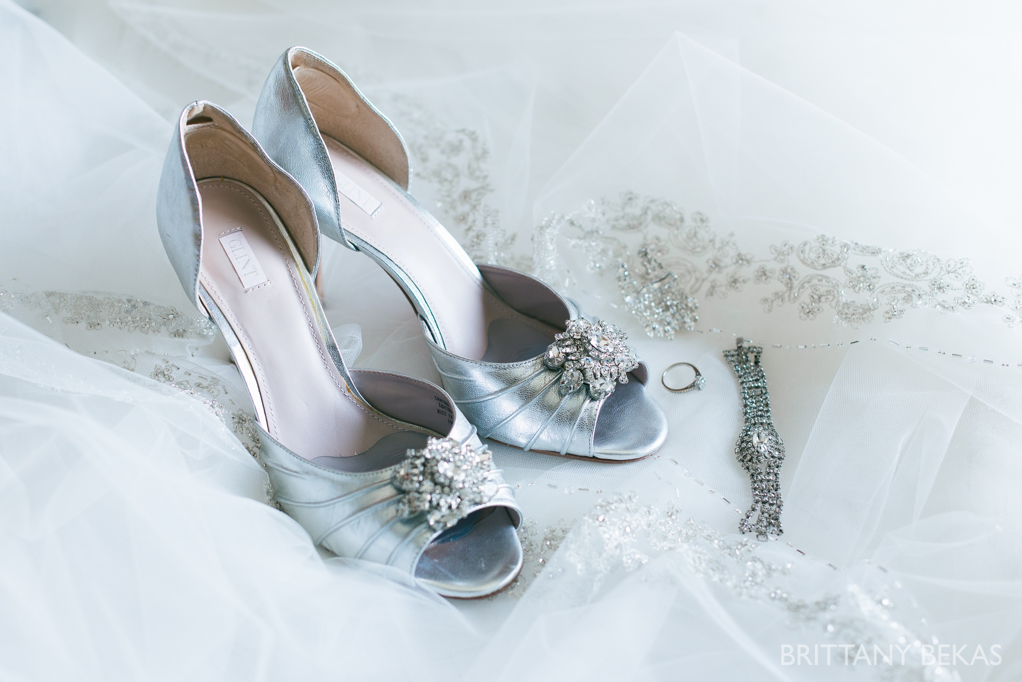 Patrick Haley Mansion Wedding - Brittany Bekas Photography_0001