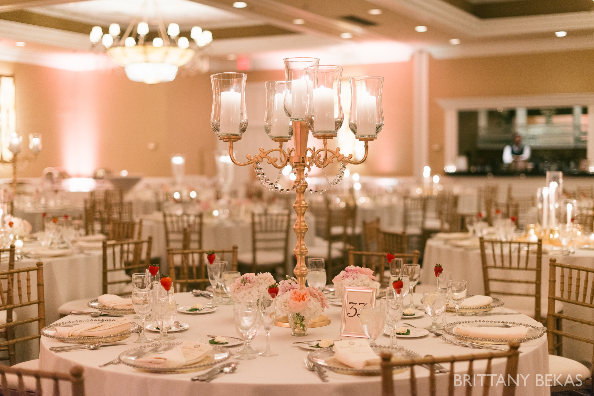 Chicago Wedding Photos St Edmunds + Concorde Banquets- Brittany Bekas Photography_0047