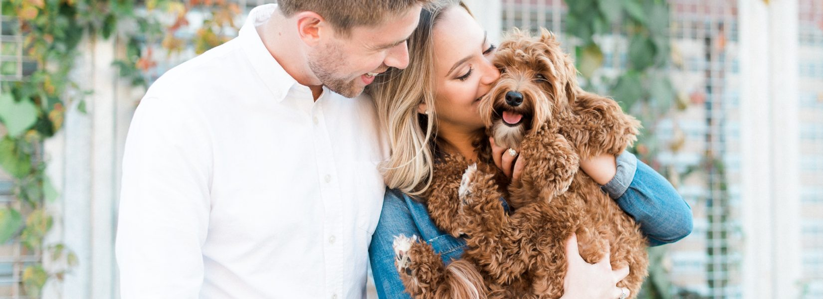 Where to take photos with your dog in Chicago + Chicago Suburbs