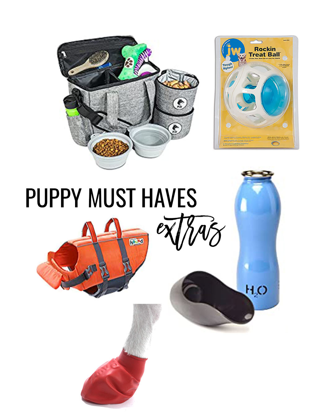 goldendoodle must haves – what you need for your doodle puppy puppy must haves