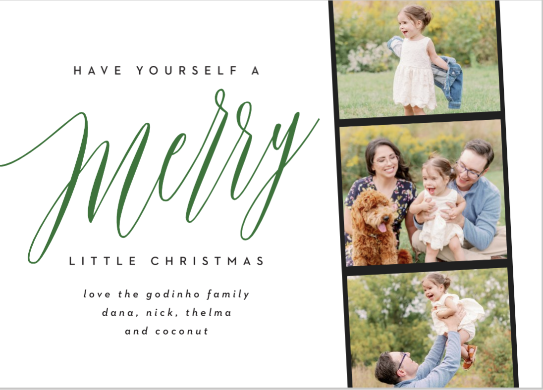 Modern Holiday Cards Christmas Cards Basic Invite Sale