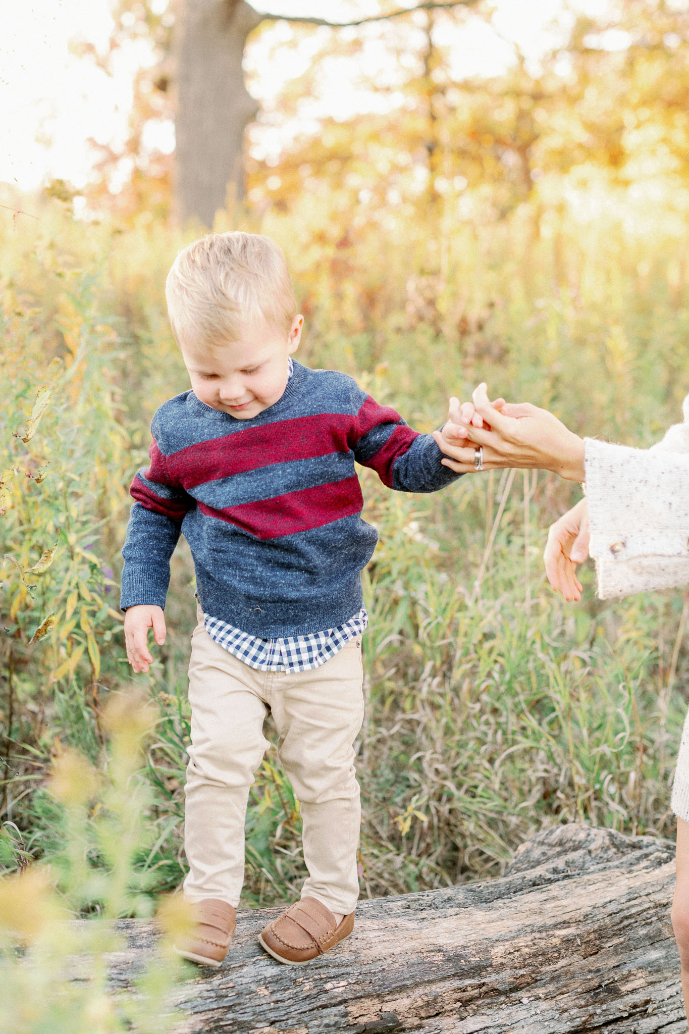 Hinsdale Lifestyle Family Photographer – Fine Art Chicago Family Photographer – Mayslake Forest Preserve-13